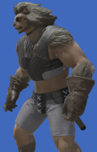 Model-Dark Dhalmelskin Gloves-Male-Hrothgar.png