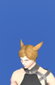 Model-The Emperor's New Hat-Male-Miqote.png