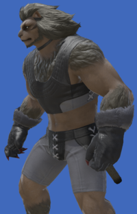Model-Werewolf Arms-Male-Hrothgar.png