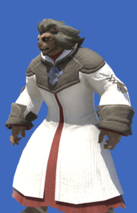 Model-Aetherial Woolen Robe-Male-Hrothgar.png