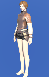 Model-Aetherial Bronze Cuirass-Female-Hyur.png