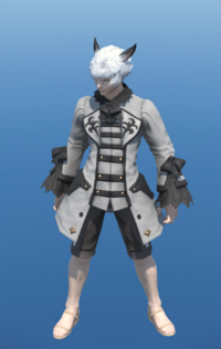 Model-High House Justaucorps-Male-Miqote.png