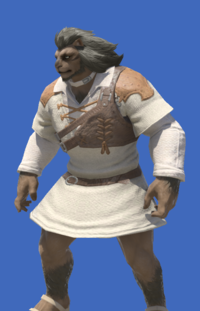 Model-Aetherial Cotton Trapper's Tunic-Male-Hrothgar.png