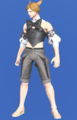Model-Bunny Chief Bustier-Male-Miqote.png