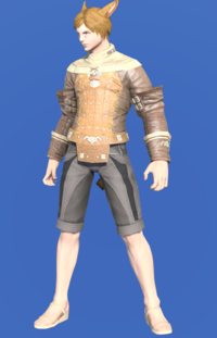 Model-Plundered Jacket-Male-Miqote.png