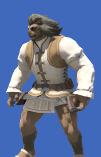 Model-Apprentice's Doublet-Male-Hrothgar.png