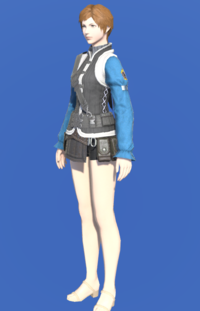 Model-Ironworks Engineer's Doublet-Female-Hyur.png