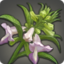 Bitter Foxglove Icon.png