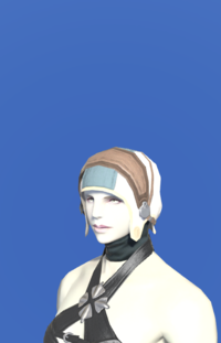 Model-Aetherial Felt Coif-Female-Roe.png