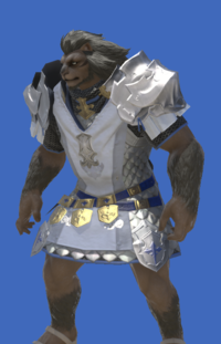Model-Augmented Gallant Surcoat-Male-Hrothgar.png