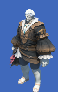 Model-Expeditioner's Tabard-Male-Roe.png