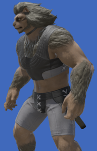 Model-The Emperor's New Gloves-Male-Hrothgar.png