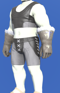 Model-Valkyrie's Gloves of Healing-Male-Roe.png