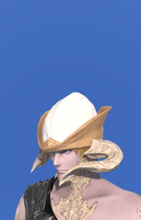Model-Aetherial Hunting Hat-Male-AuRa.png