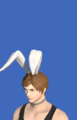 Model-Bunny Chief Crown-Male-Hyur.png