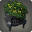 Potted Axilflower Icon.png