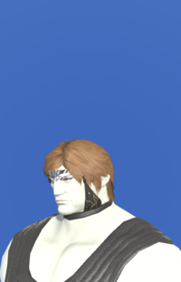 Model-Chivalrous Circlet +2-Male-Roe.png