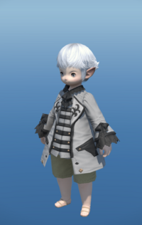 Model-High House Justaucorps-Male-Lalafell.png