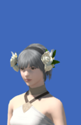 Model-Veil of Eternal Innocence-Female-Hyur.png