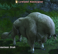 LowlandNannygoat.png