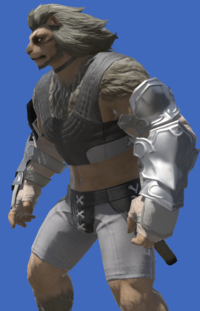Model-Flame Elite's Vambraces-Male-Hrothgar.png