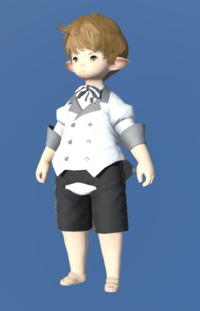 Model-Patrician's Coatee-Male-Lalafell.png