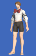 Model-Bunny Bustier-Male-Hyur.png