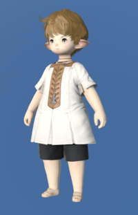 Model-Cotton Tabard-Male-Lalafell.png