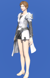 Model-Direwolf Tabard of Aiming-Female-Hyur.png