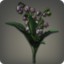 Black Lilies of the Valley Icon.png