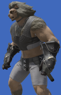 Model-Scion Traveler's Gloves-Male-Hrothgar.png
