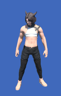Model-YoRHa Type-55 Bottoms of Maiming-Male-Miqote.png