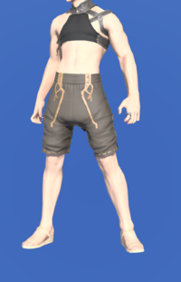 Model-Fisher's Gaskins-Male-Miqote.png