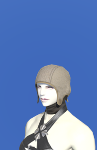 Model-Dated Hempen Coif (Brown)-Female-Roe.png