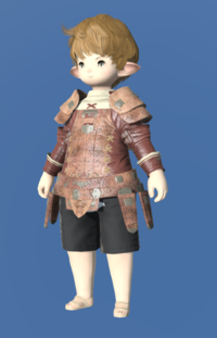 Model-Storm Private's Jacket-Male-Lalafell.png