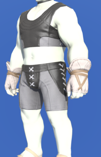 Model-Valerian Wizard's Fingerless Halfgloves-Male-Roe.png