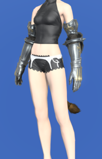 Model-Gordian Gauntlets of Fending-Female-Miqote.png