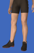 Model-Valentione Rose Shoes-Male-Hyur.png