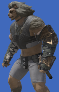 Model-Augmented Slothskin Gloves of Aiming-Male-Hrothgar.png