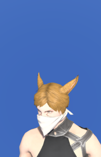 Model-Cotton Scarf-Male-Miqote.png