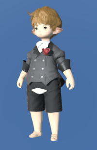 Model-Manderville Coatee-Male-Lalafell.png