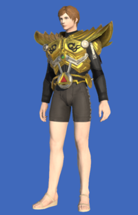 Model-Tarnished Body of the Golden Wolf-Male-Hyur.png
