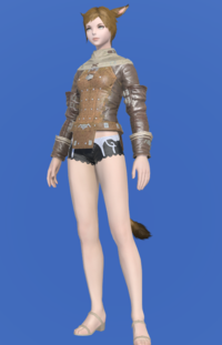 Model-Plundered Jacket-Female-Miqote.png
