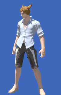 Model-Summer Indigo Shirt-Male-Miqote.png