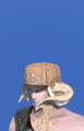 Model-Expeditioner's Cap-Male-AuRa.png