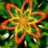 Mind Blast Icon.png