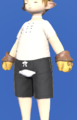 Model-Artisan's Mitts-Male-Lalafell.png