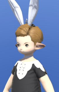 Model-Bunny Crown-Male-Lalafell.png