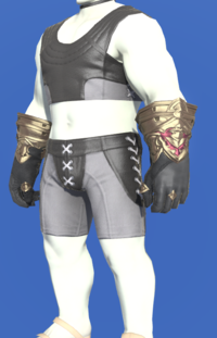 Model-Midan Gloves of Aiming-Male-Roe.png