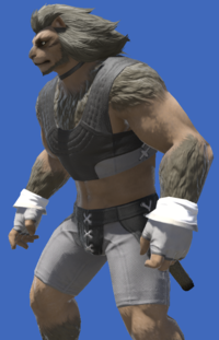 Model-Blessed Halfgloves-Male-Hrothgar.png